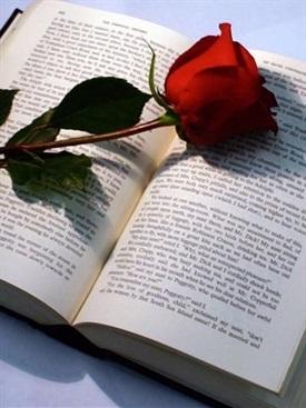 Libro y rosa-Trabalibros