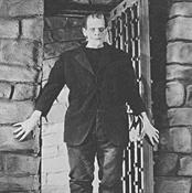 Película Frankenstein (3)-Trabalibros