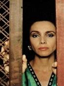 Película La pasión turca (3)-Trabalibros