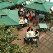 Restaurante Un lugar de la Mancha(10)