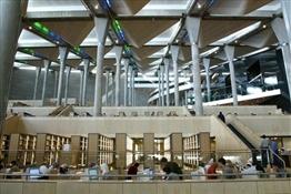 Nueva Biblioteca de Alejandría Egipto (6)-Trabalibros