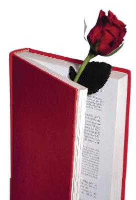 Rosa y libro-Trabalibros