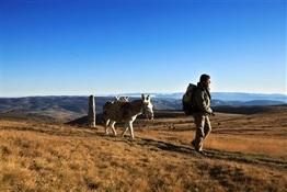 04.Camino de Stevenson Montes de Cévennes-Trabalibros